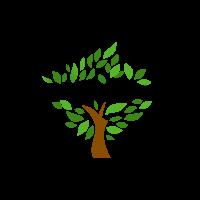 Bois Ipe Canada